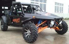 booxt-buggy-1300-raid-homologue_020.jpg